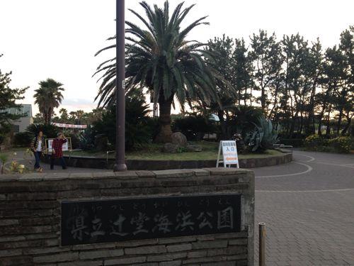 辻堂海浜公園へのアクセスはバスが便利