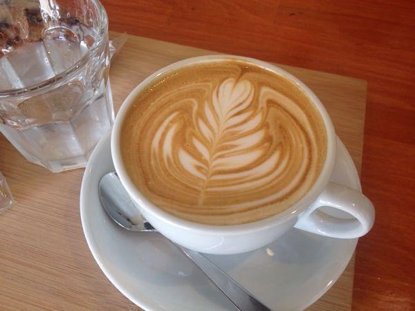 おいしいカフェラテとパンがあればいい。ガムツリーコーヒーカンパニー(新川)
