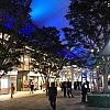 上野東京ライン開通で湘南から東京への通勤はどうなる?